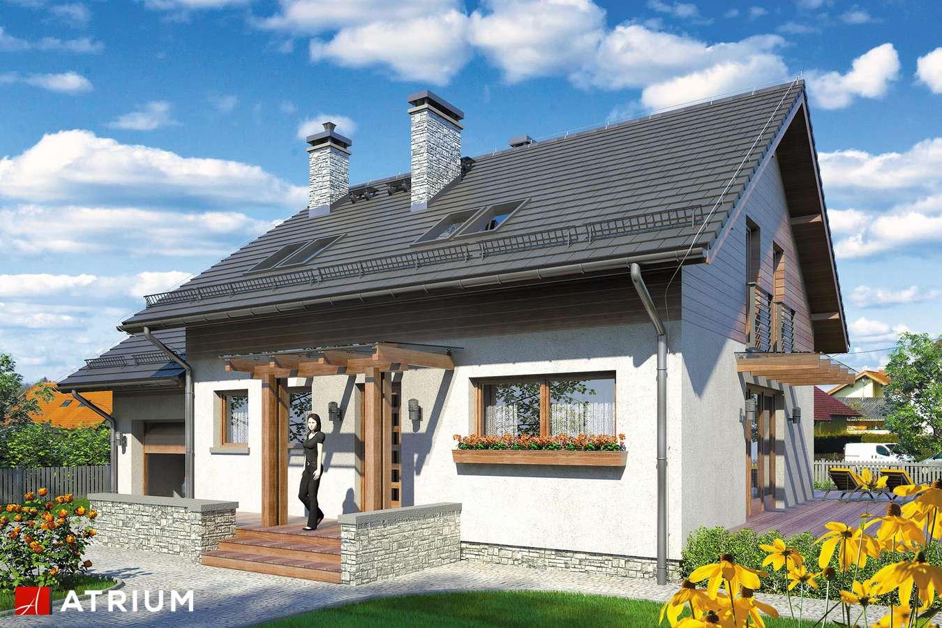 Projekty domów - Projekt domu z poddaszem ALETTA - wizualizacja 1