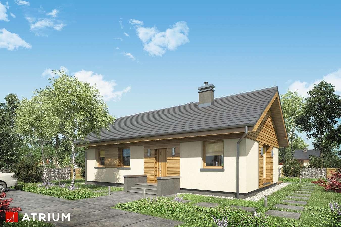 Projekty domów - Projekt domu parterowego AURORA MINI - wizualizacja 1