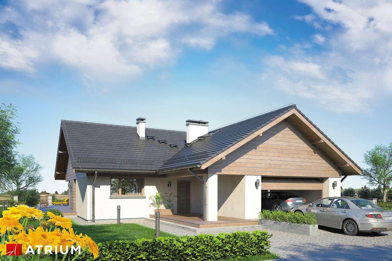 Projekty domów - Projekt domu parterowego WINSTON II SP - wizualizacja 1