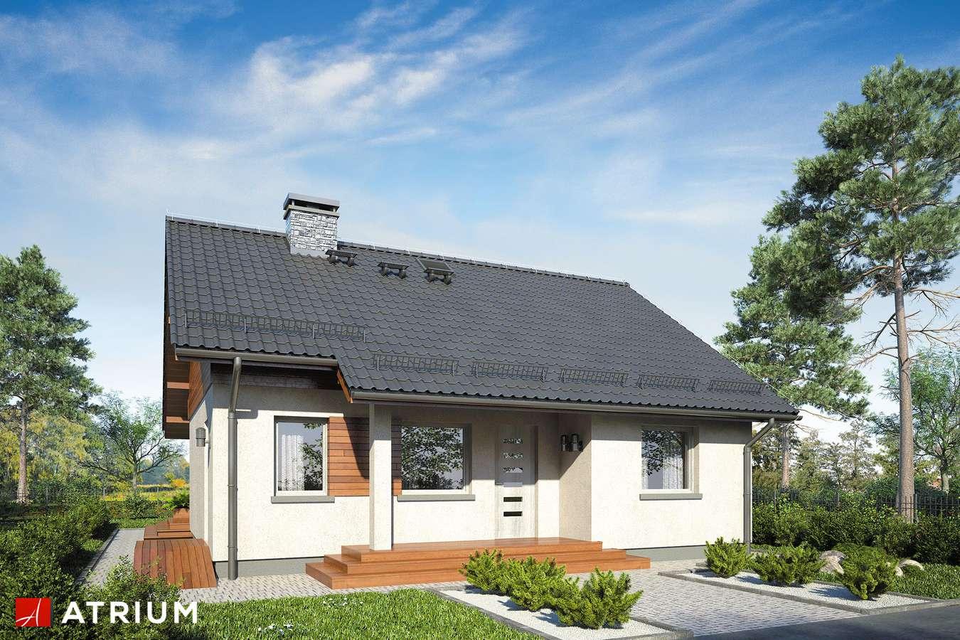 Projekty domów - Projekt domu parterowego REMIK IV SP - wizualizacja 1