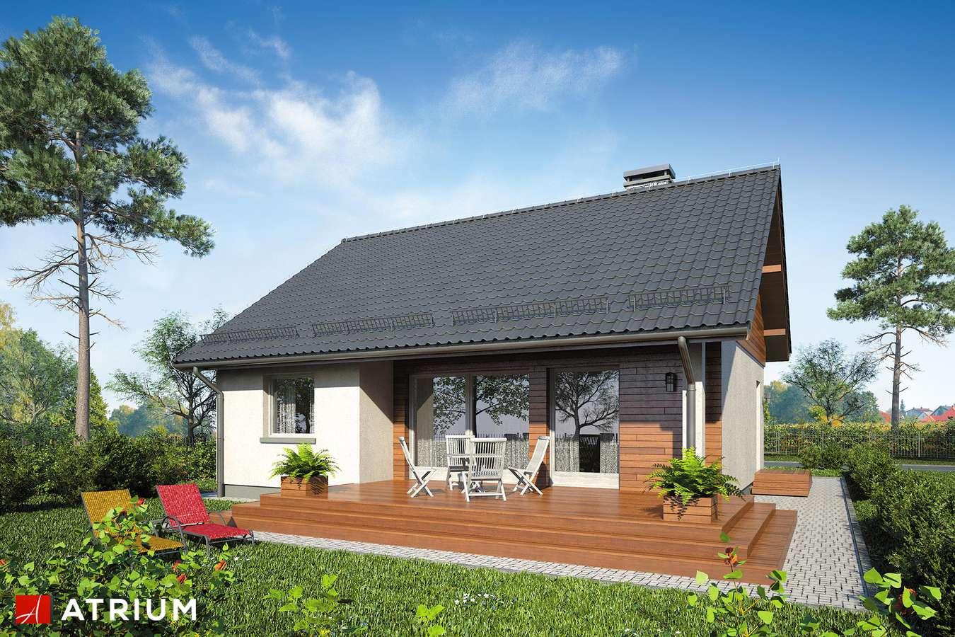 Projekty domów - Projekt domu parterowego REMIK IV SP - wizualizacja 2
