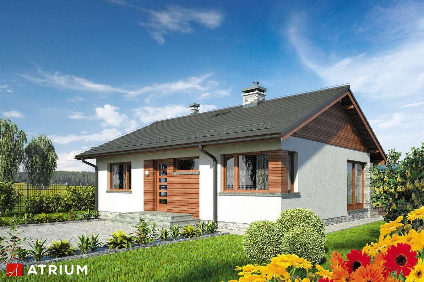 Projekty domów - Projekt domu parterowego ROY - wizualizacja 1