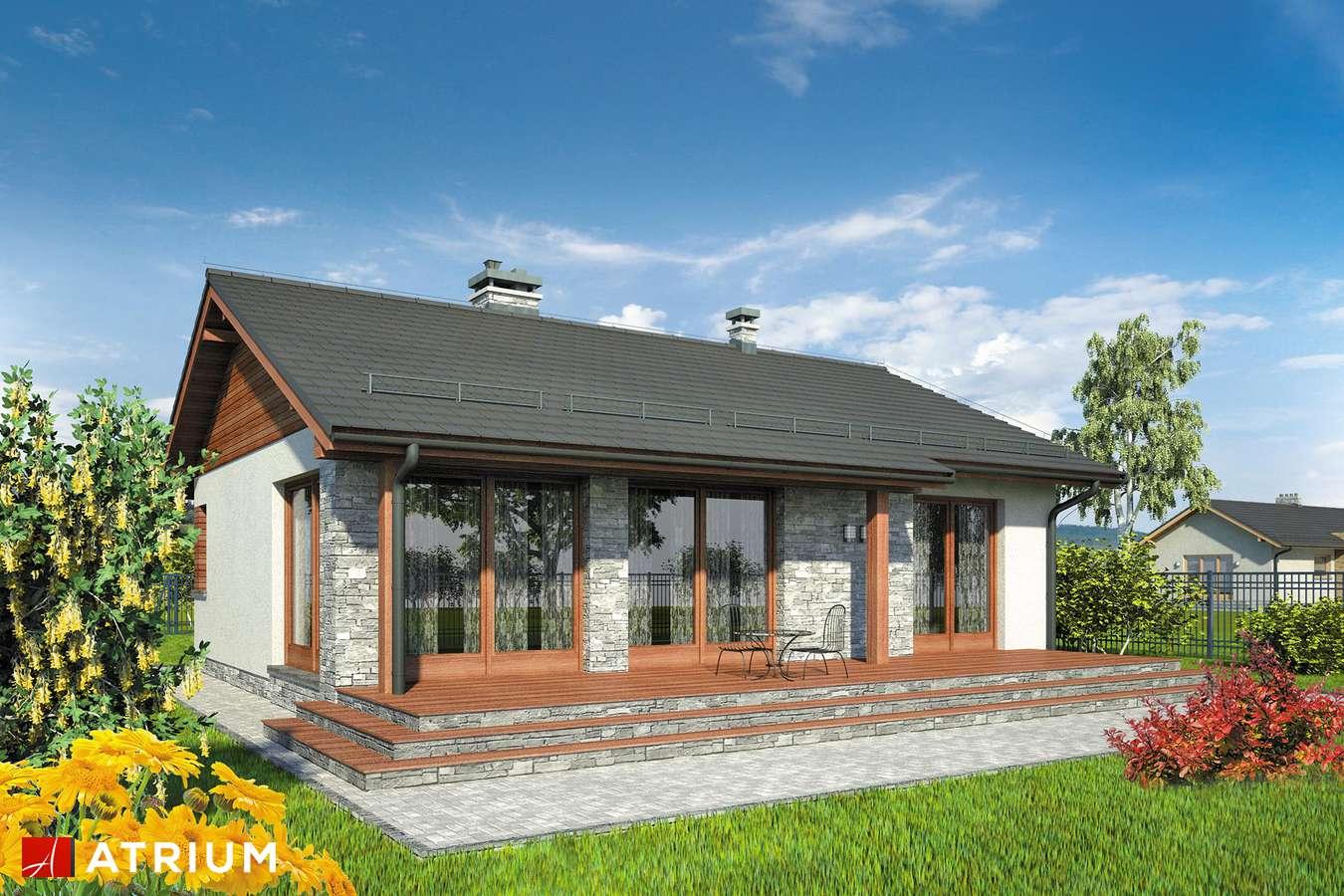 Projekty domów - Projekt domu parterowego ROY - wizualizacja 2