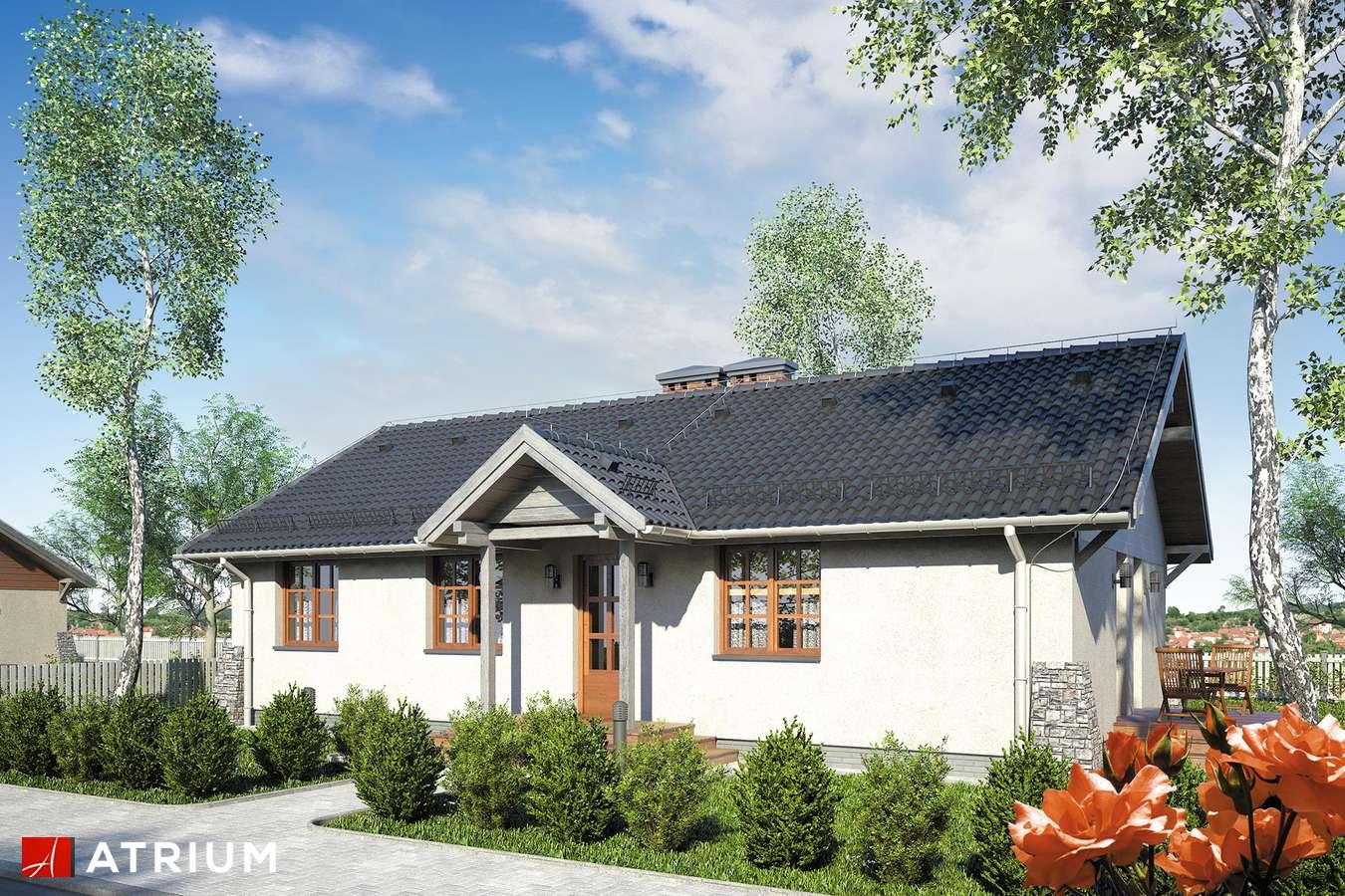 Projekty domów - Projekt domu parterowego ŚWIT SP - wizualizacja 1