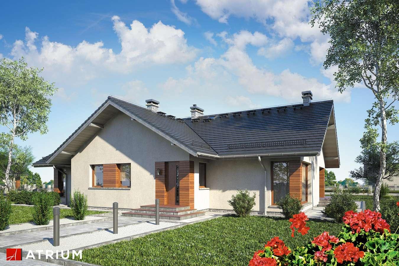 Projekty domów - Projekt domu parterowego RIWIERA - wizualizacja 1