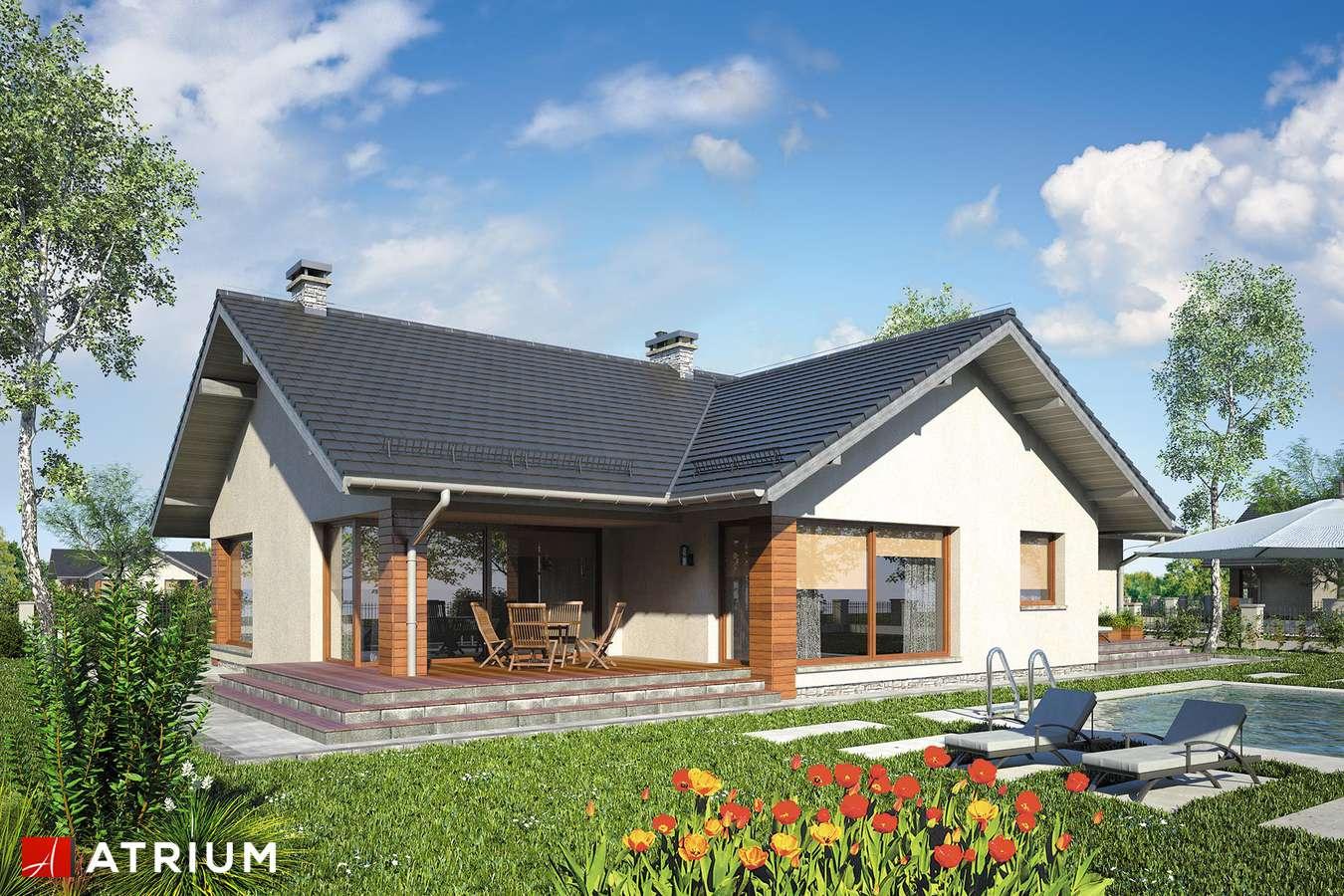 Projekty domów - Projekt domu parterowego RIWIERA - wizualizacja 2
