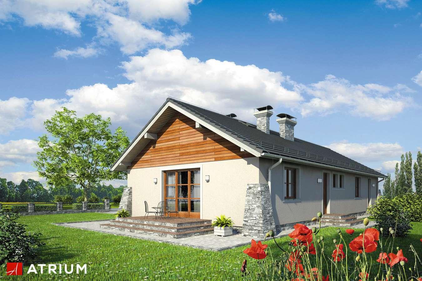 Projekty domów - Projekt domu parterowego BRZASK II - wizualizacja 2