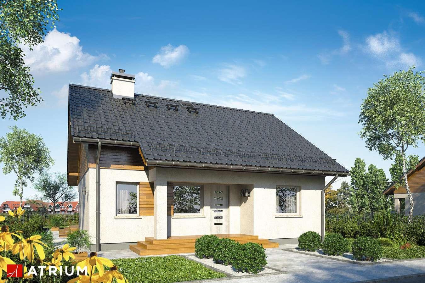 Projekty domów - Projekt domu z poddaszem REMIK V - wizualizacja 1