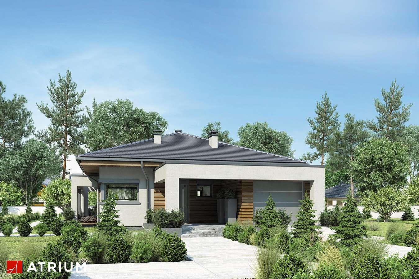 Projekty domów - Projekt domu parterowego SARDYNIA - wizualizacja 1