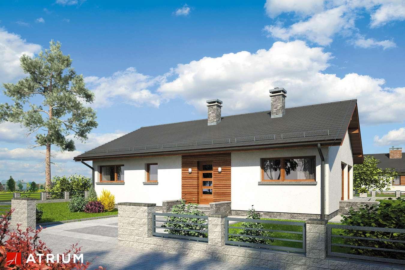 Projekty domów - Projekt domu parterowego SOLEO II - wizualizacja 1