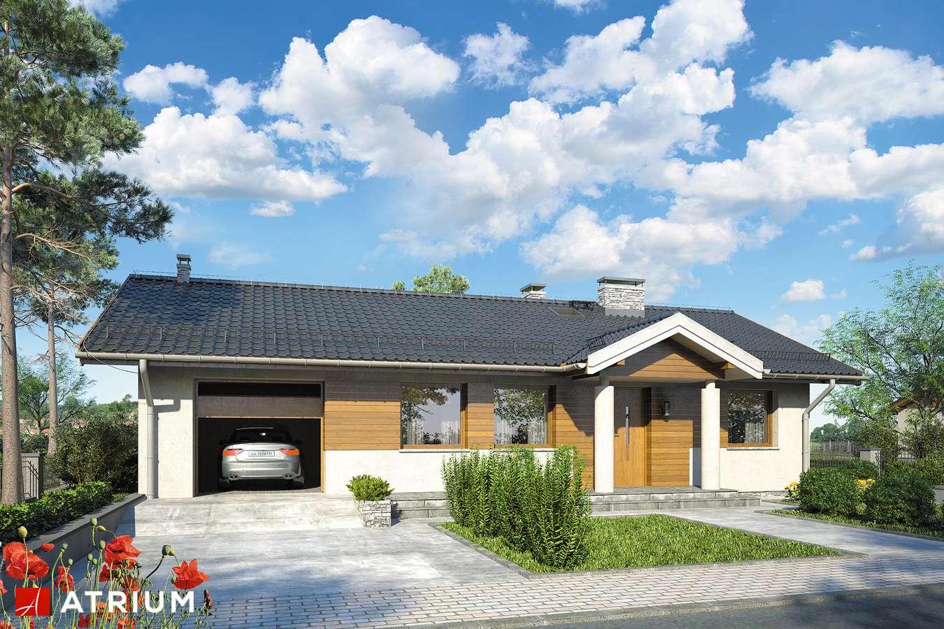 Projekty domów - Projekt domu parterowego ZORBA VI - wizualizacja 1