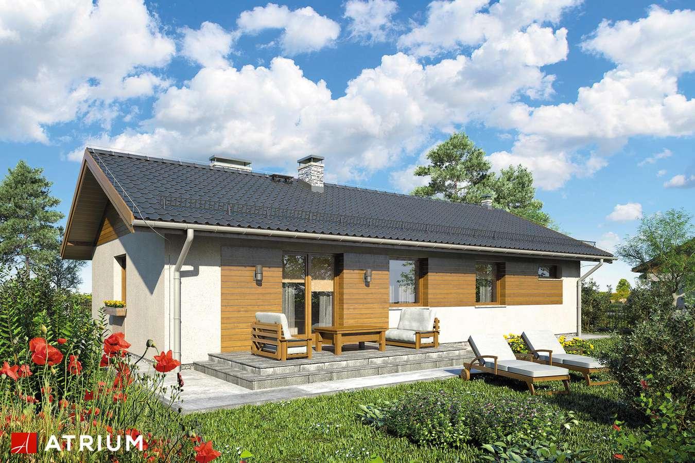 Projekty domów - Projekt domu parterowego ZORBA VI - wizualizacja 2