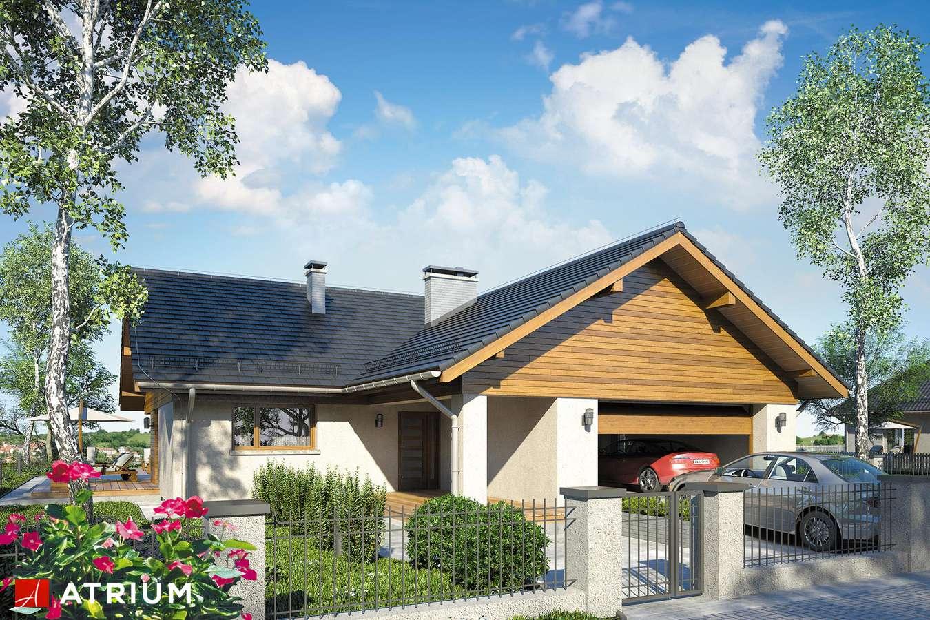 Projekty domów - Projekt domu parterowego WINSTON VIII - wizualizacja 1
