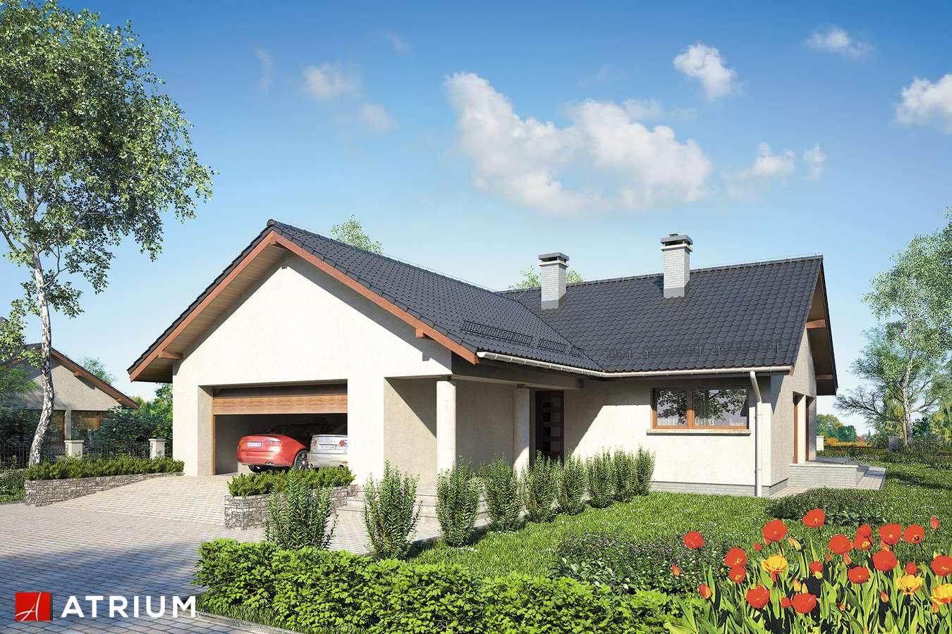 Projekty domów - Projekt domu parterowego SOLEO III - wizualizacja 1