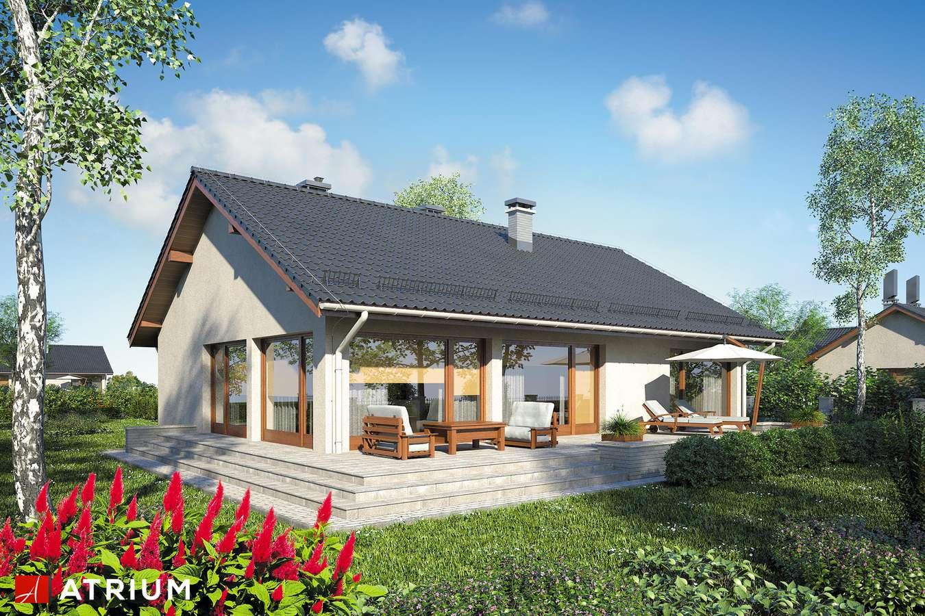 Projekty domów - Projekt domu parterowego SOLEO III - wizualizacja 2