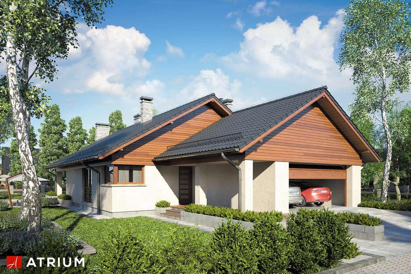 Projekty domów - Projekt domu parterowego IBIS - wizualizacja 1