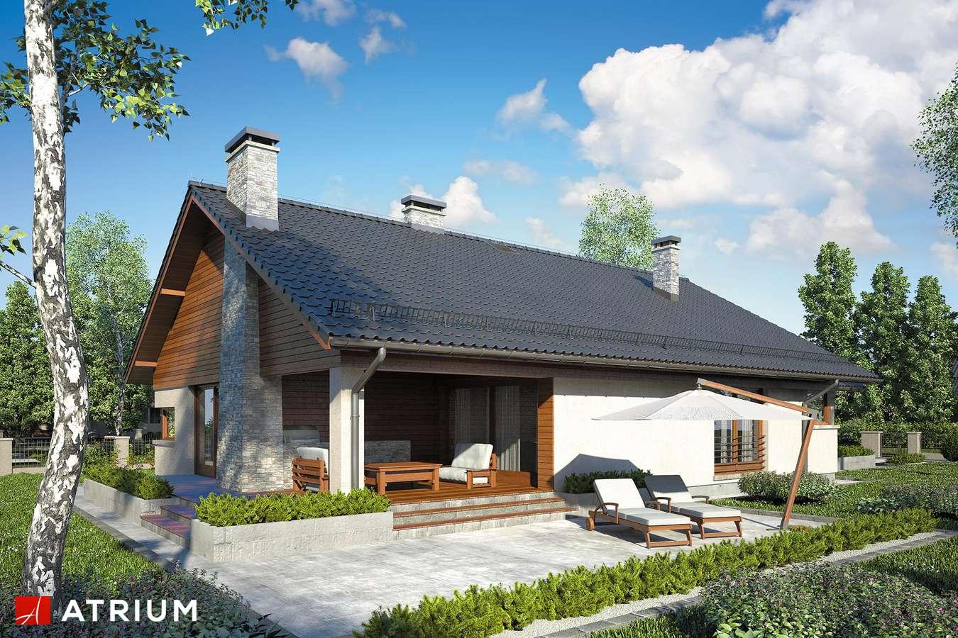 Projekty domów - Projekt domu parterowego IBIS - wizualizacja 2