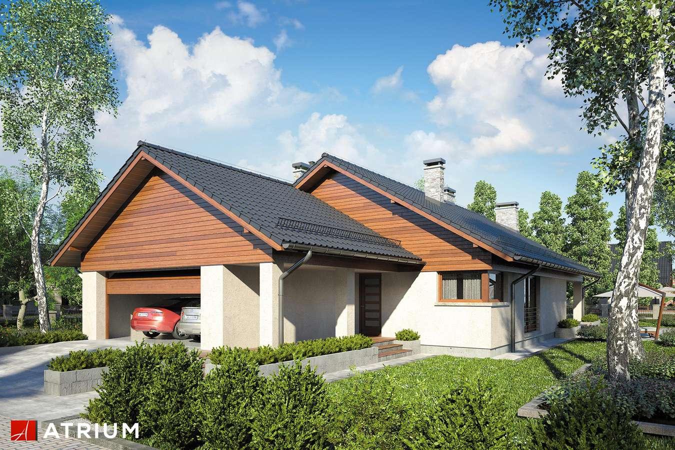 Projekty domów - Projekt domu parterowego IBIS - wizualizacja 1 - wersja lustrzana