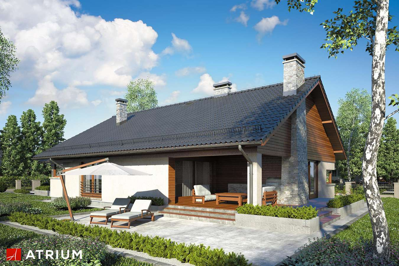 Projekty domów - Projekt domu parterowego IBIS - wizualizacja 2 - wersja lustrzana