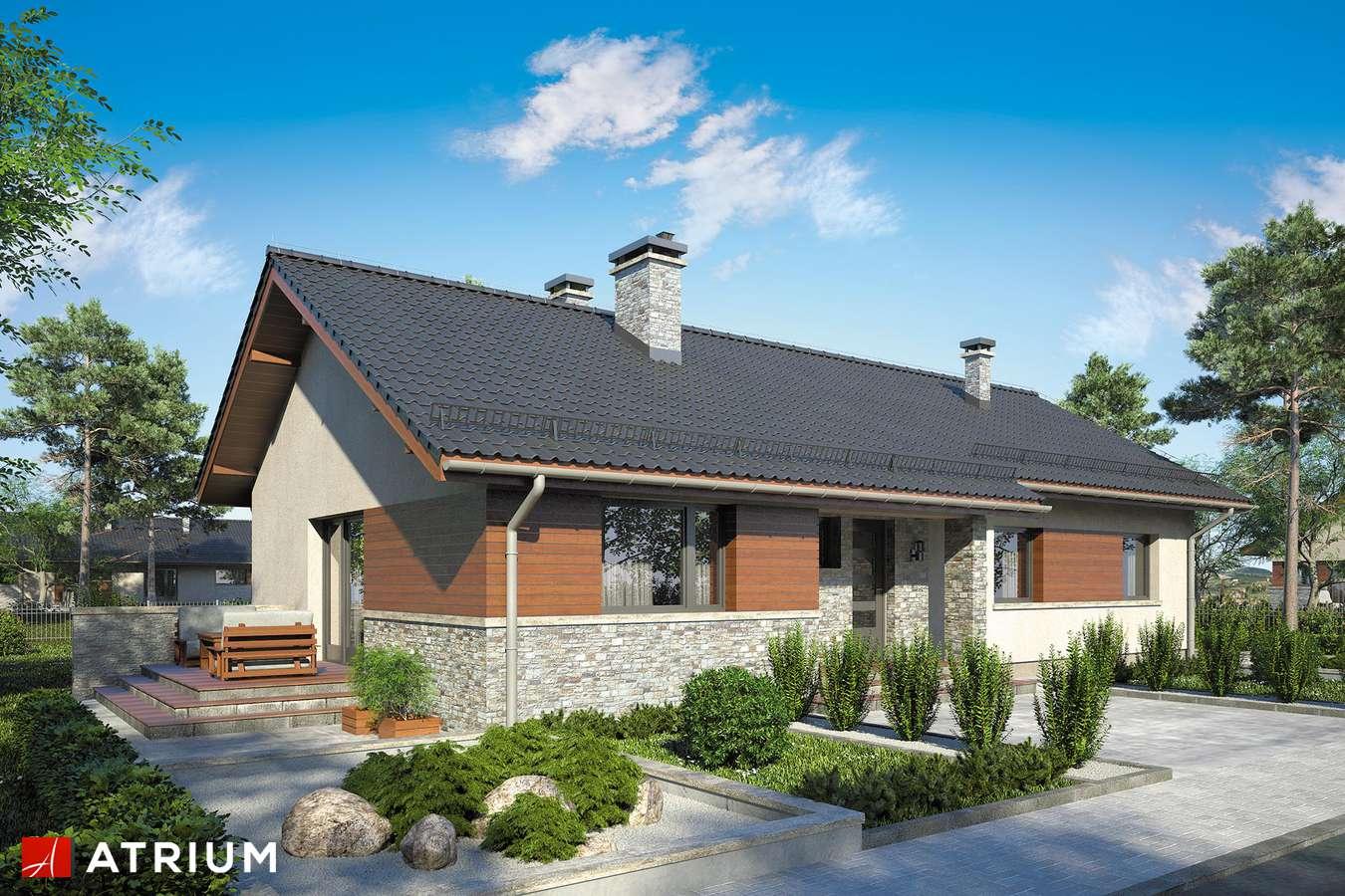 Projekty domów - Projekt domu parterowego NEVADA II - wizualizacja 1 - wersja lustrzana