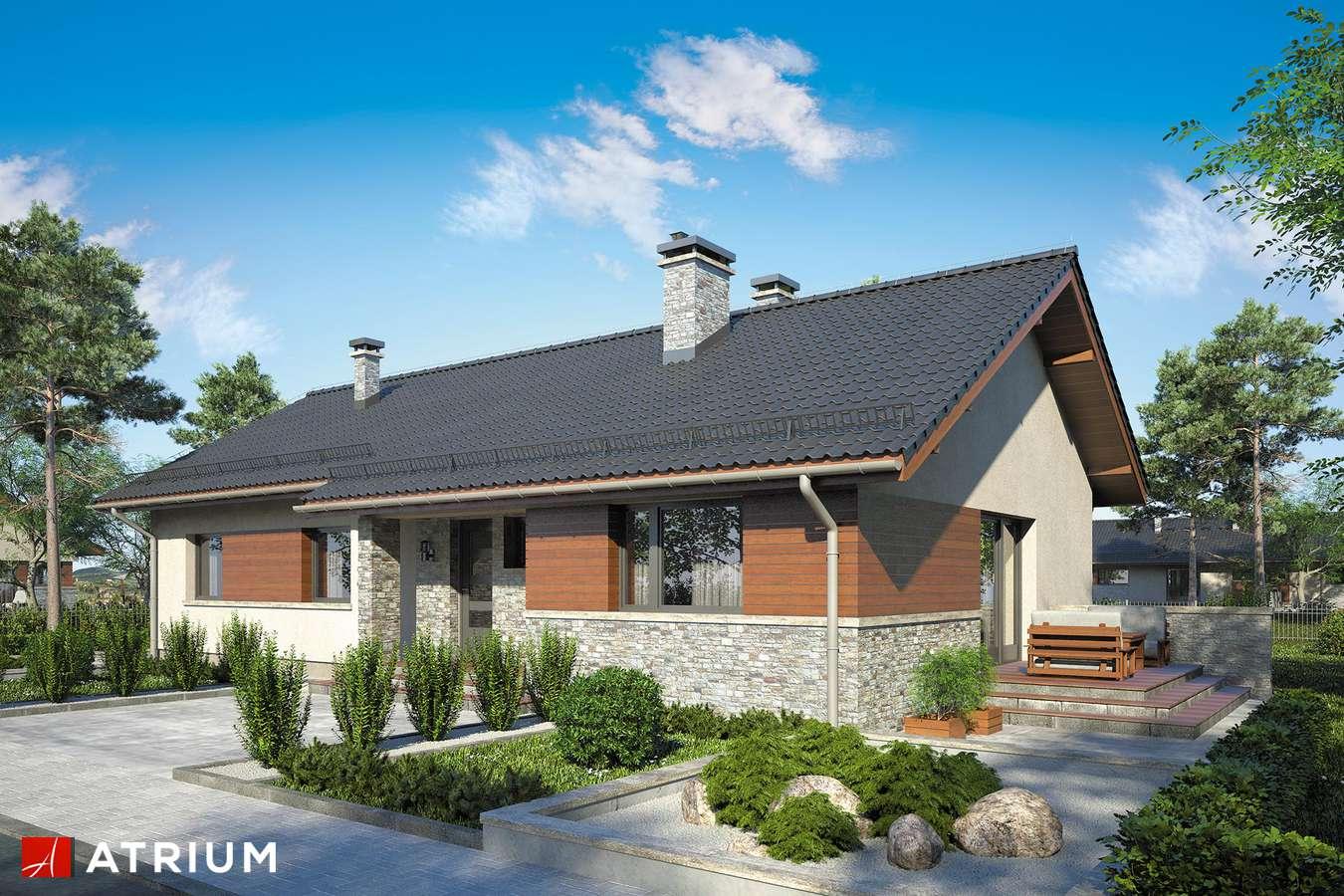 Projekty domów - Projekt domu parterowego NEVADA II - wizualizacja 1