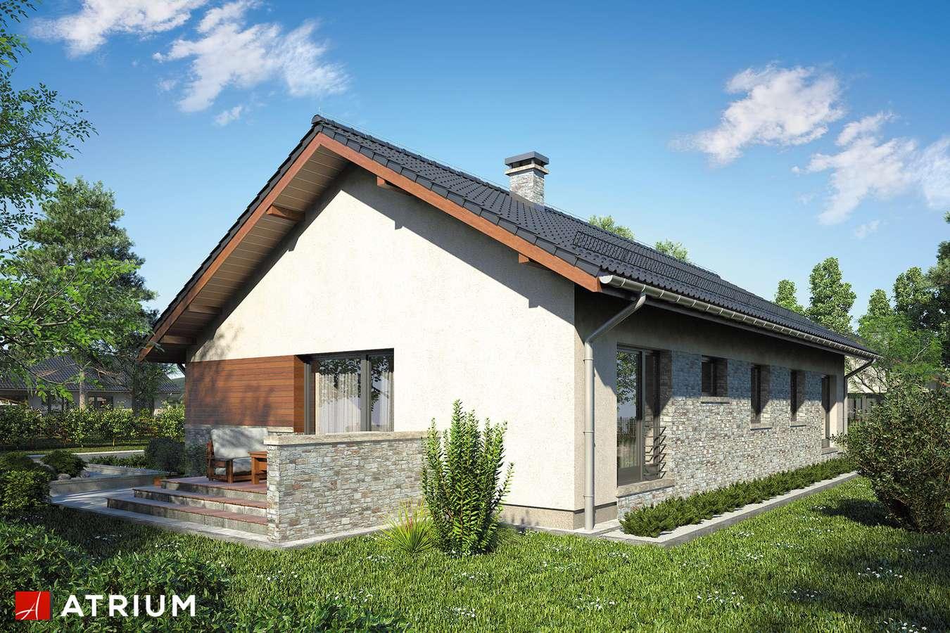 Projekty domów - Projekt domu parterowego NEVADA II - wizualizacja 2