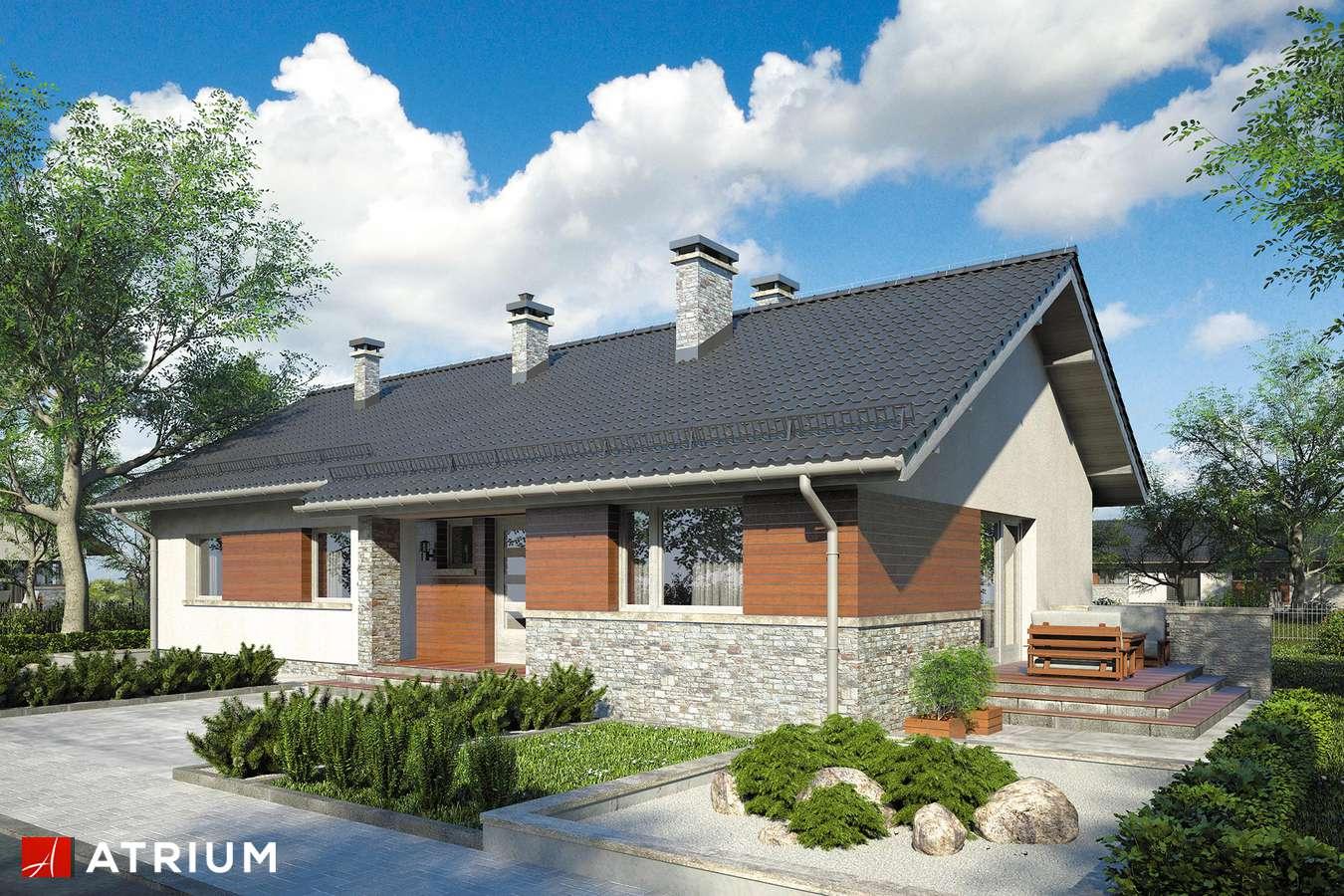 Projekty domów - Projekt domu parterowego NEVADA IV - wizualizacja 1