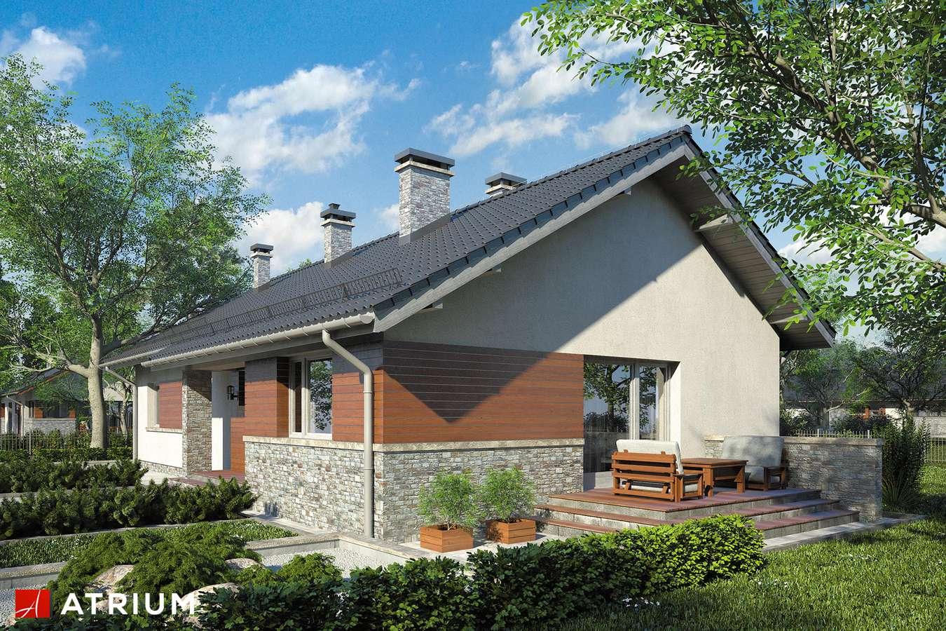 Projekty domów - Projekt domu parterowego NEVADA IV - wizualizacja 2