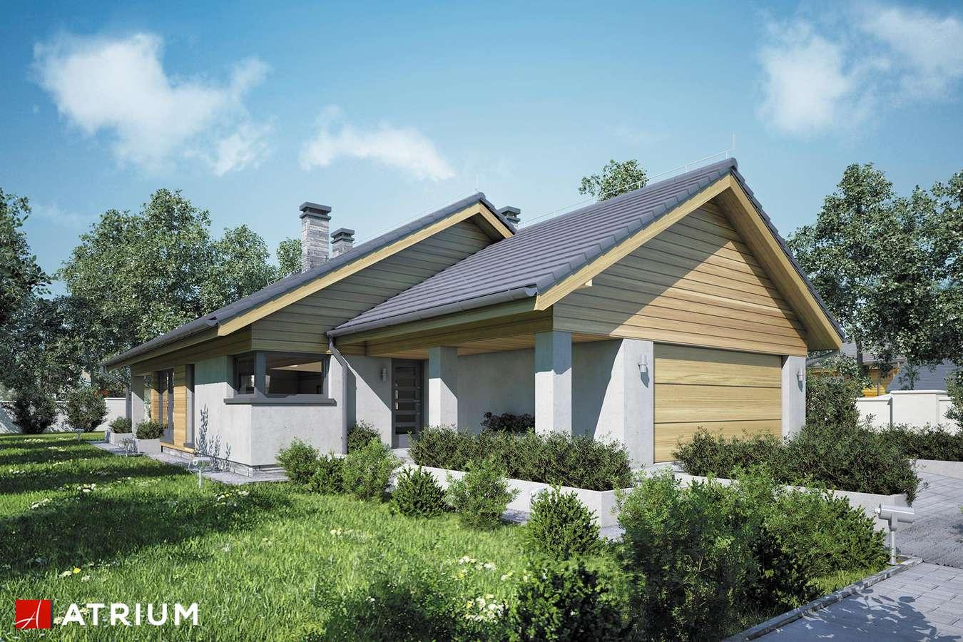 Projekty domów - Projekt domu parterowego IBIS II - wizualizacja 1