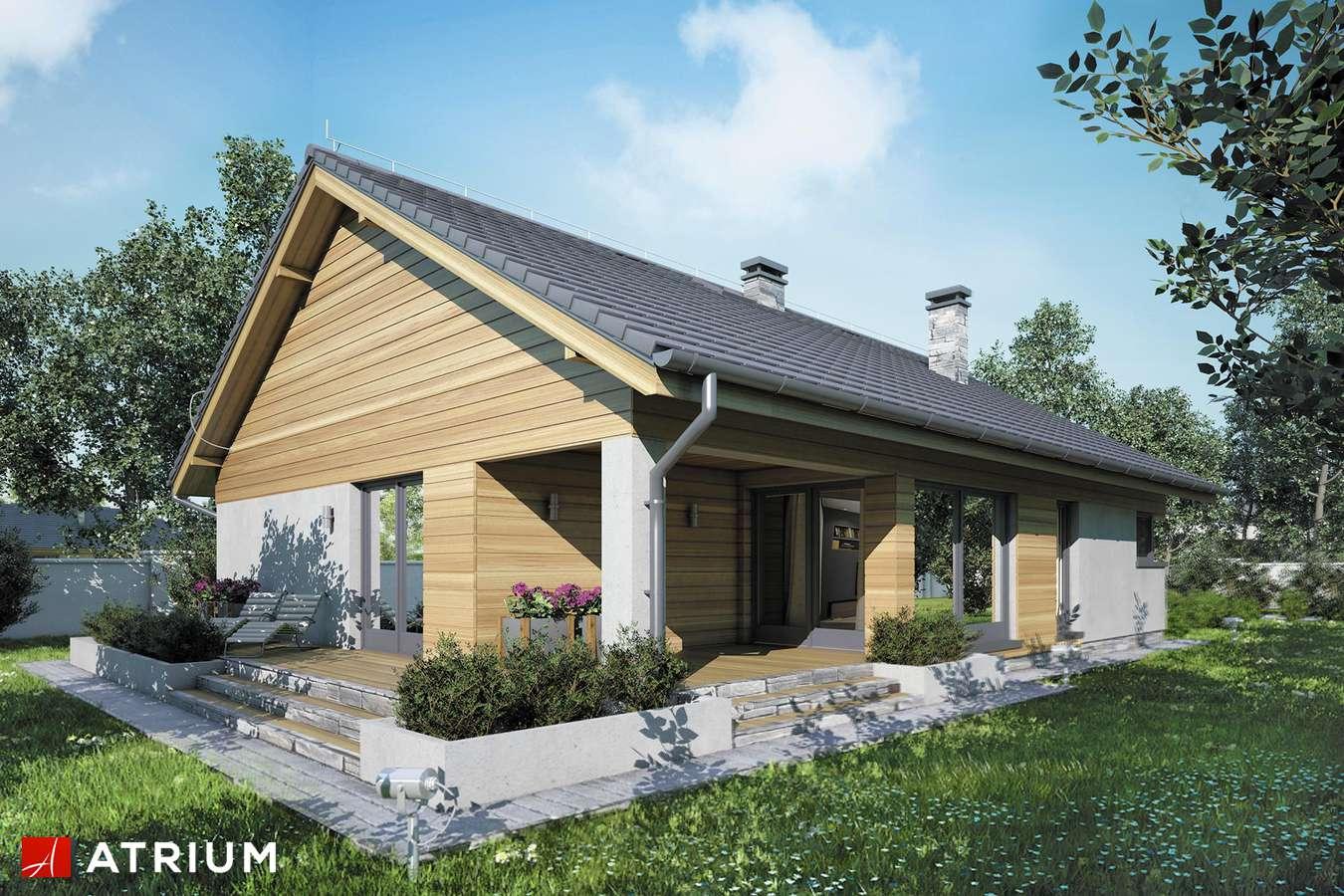 Projekty domów - Projekt domu parterowego IBIS II - wizualizacja 2