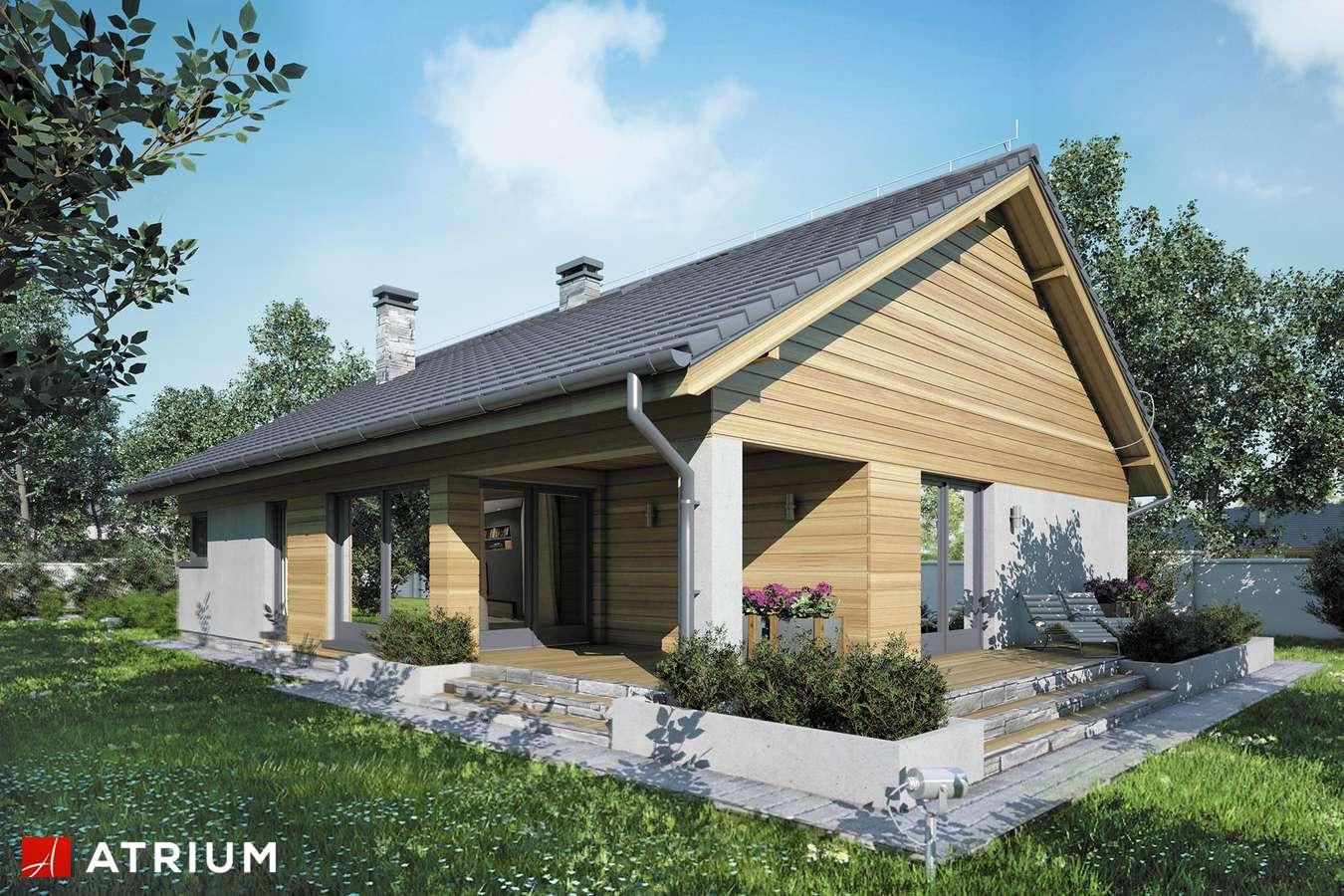 Projekty domów - Projekt domu parterowego IBIS II - wizualizacja 2 - wersja lustrzana