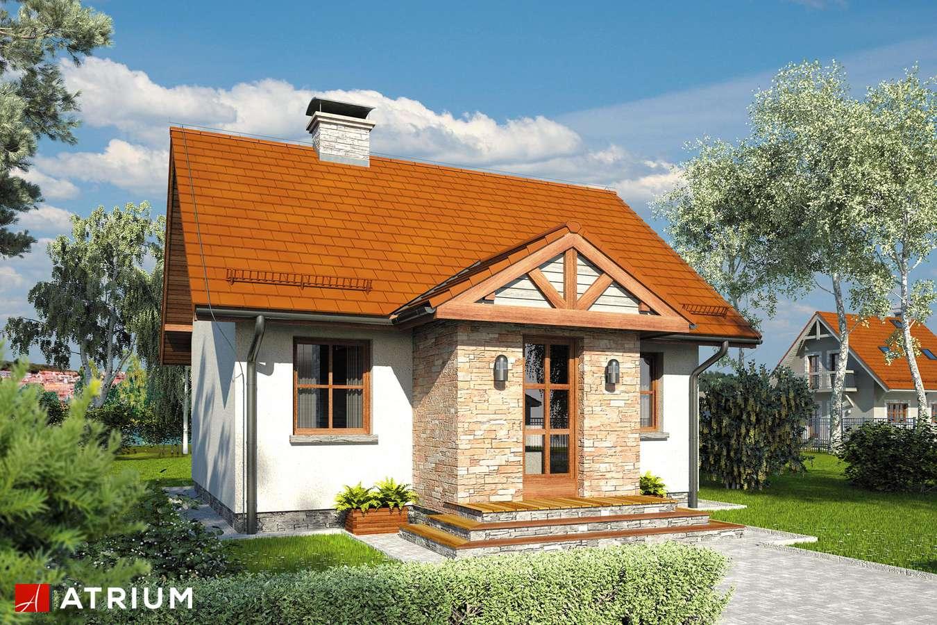 Projekty domów - Projekt domu parterowego FILEMON III - wizualizacja 1