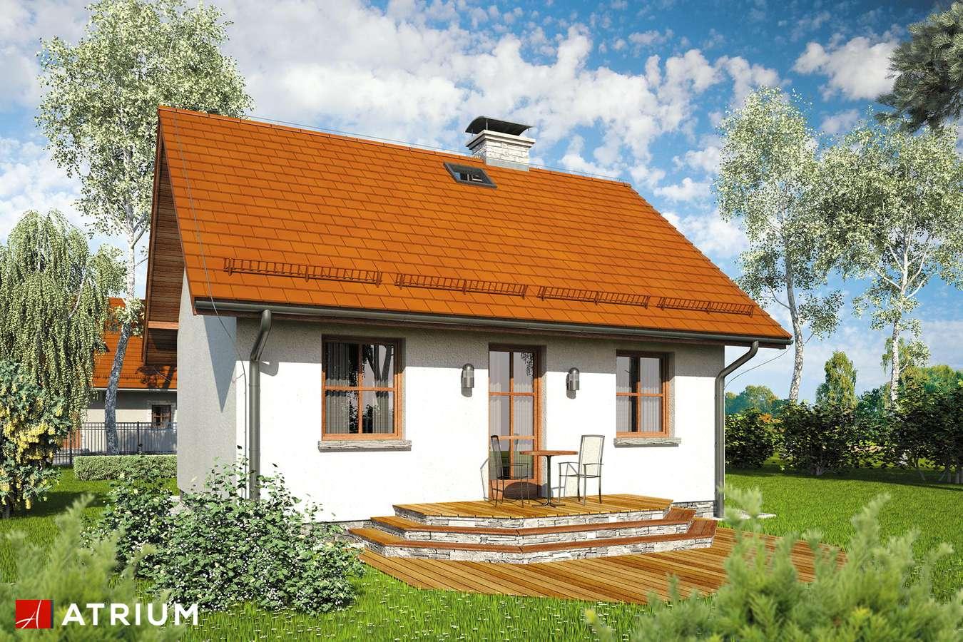 Projekty domów - Projekt domu parterowego FILEMON III - wizualizacja 2