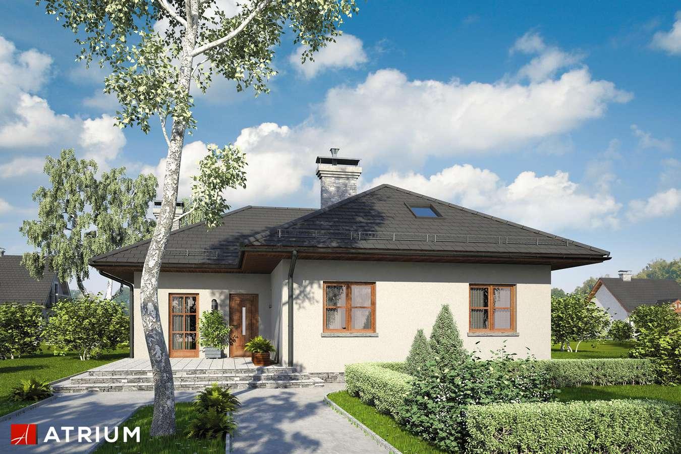 Projekty domów - Projekt domu z poddaszem WAżKA II - wizualizacja 1