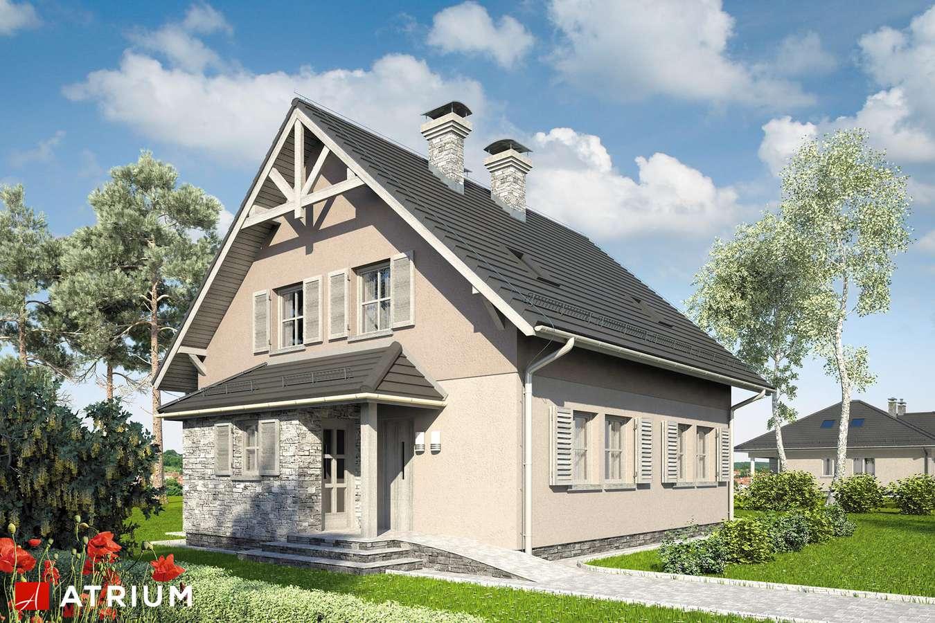 Projekt domu z poddaszem RADOść II - wizualizacja 1