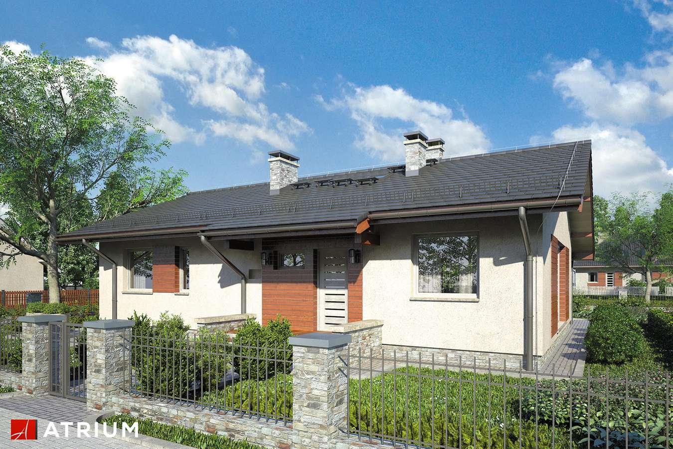 Projekty domów - Projekt domu parterowego NEO VIII - wizualizacja 1 - wersja lustrzana