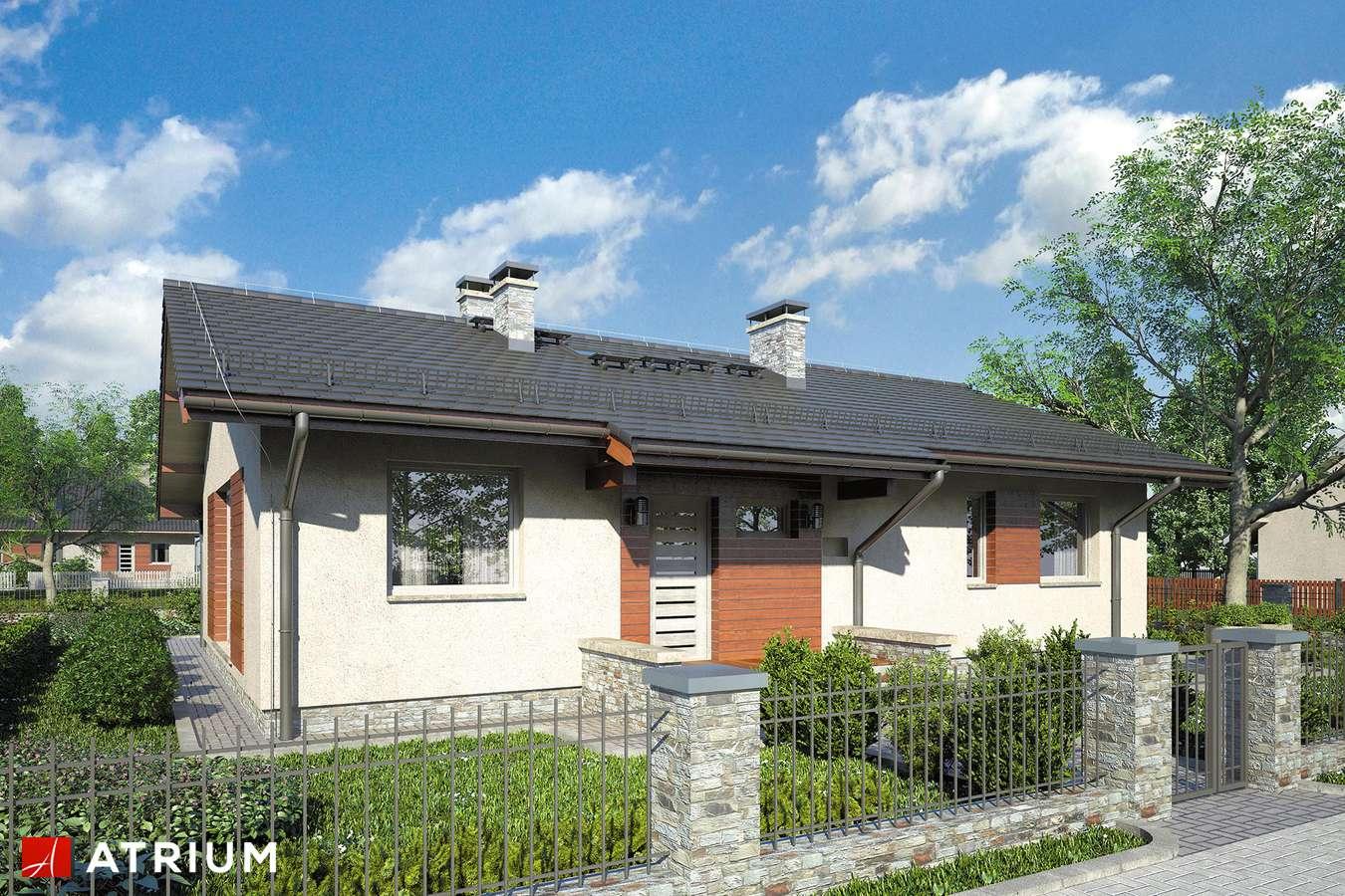 Projekty domów - Projekt domu parterowego NEO VIII - wizualizacja 1
