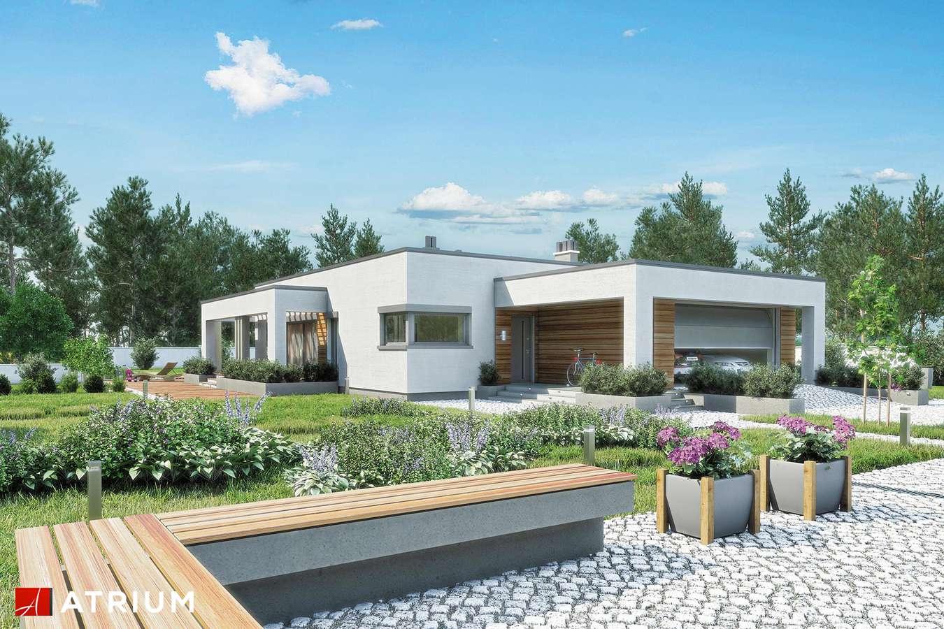 Projekty domów - Projekt domu parterowego SARDYNIA III - wizualizacja 1