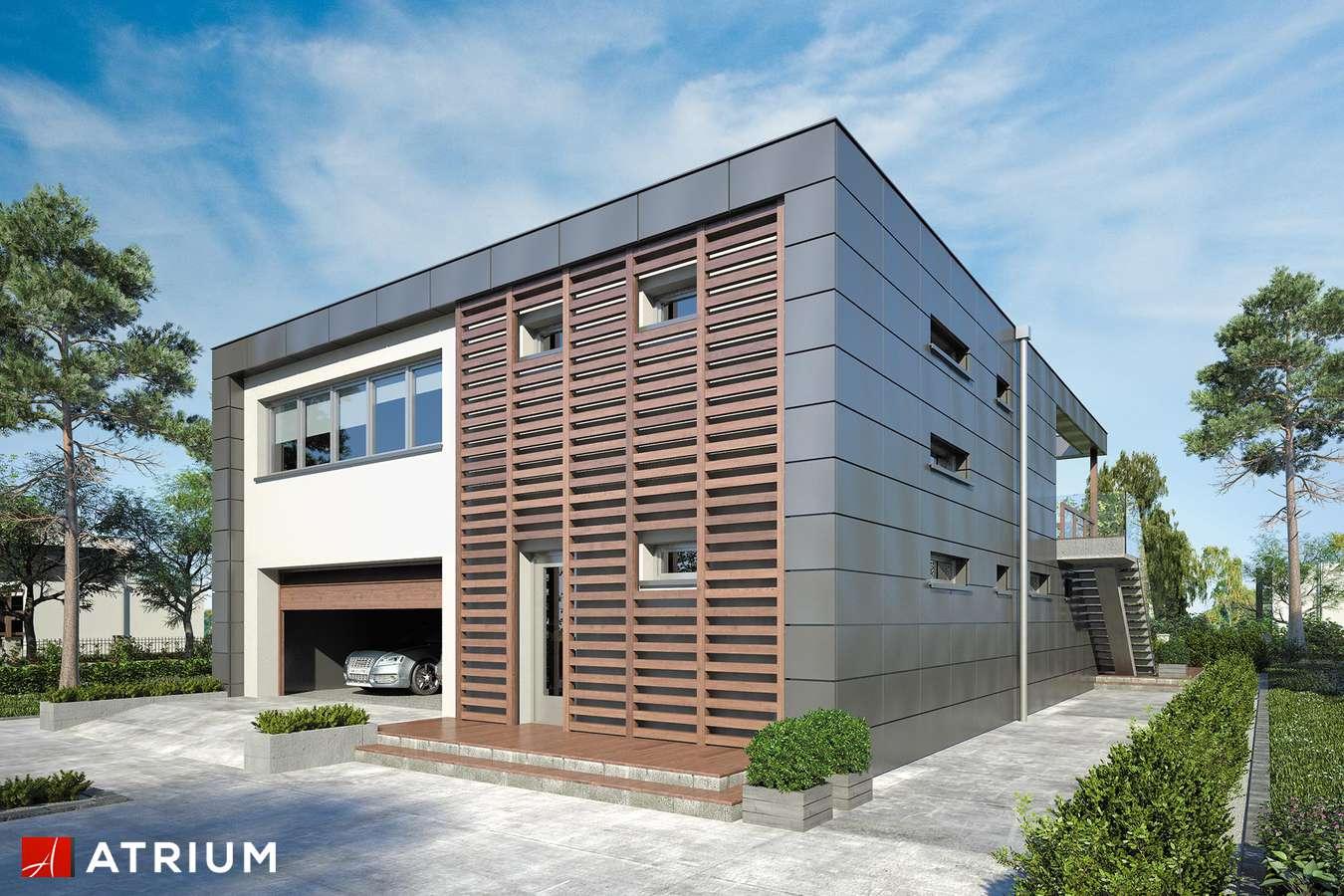 Projekty domów - Projekt domu piętrowego IL PREMIO - wizualizacja 1