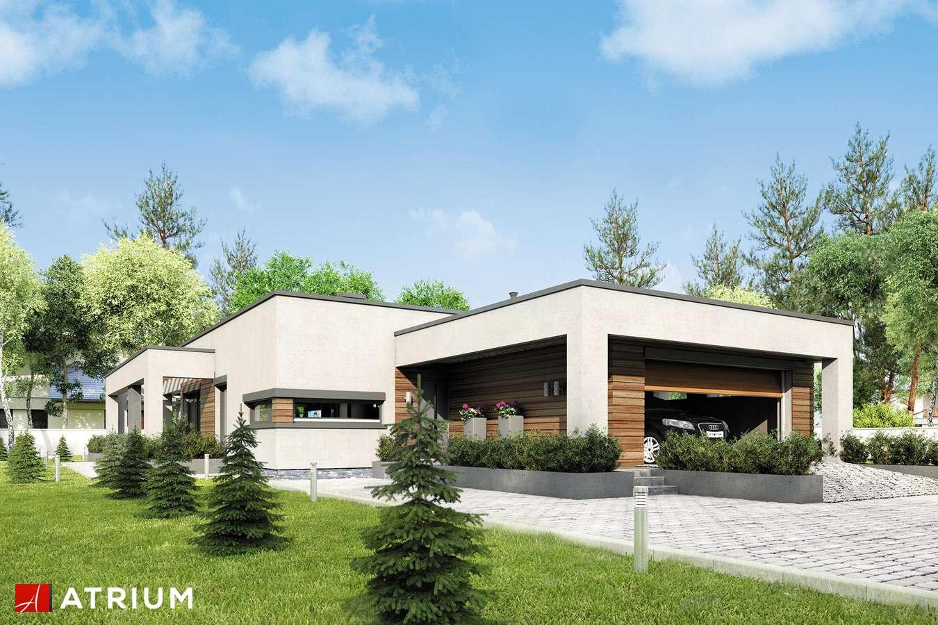 Projekty domów - Projekt domu parterowego SARDYNIA V - wizualizacja 1