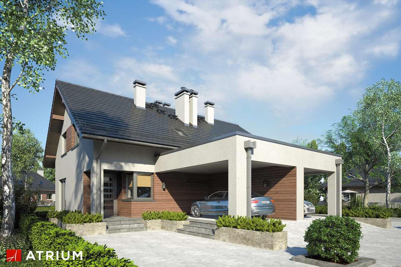 Projekty domów - Projekt domu z poddaszem DUET II - wizualizacja 1