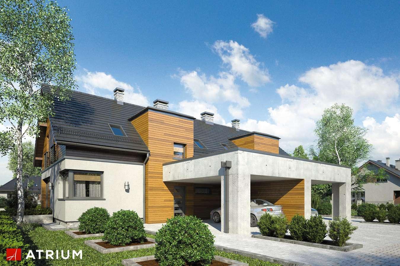 Projekty domów - Projekt domu z poddaszem POLO DUO III - wizualizacja 1