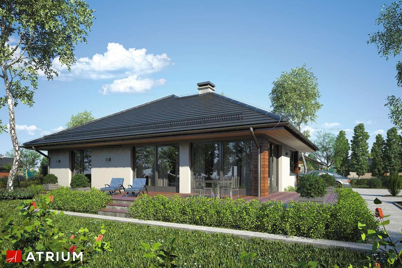 Projekty domów - Projekt domu parterowego SATURN IV - wizualizacja 2