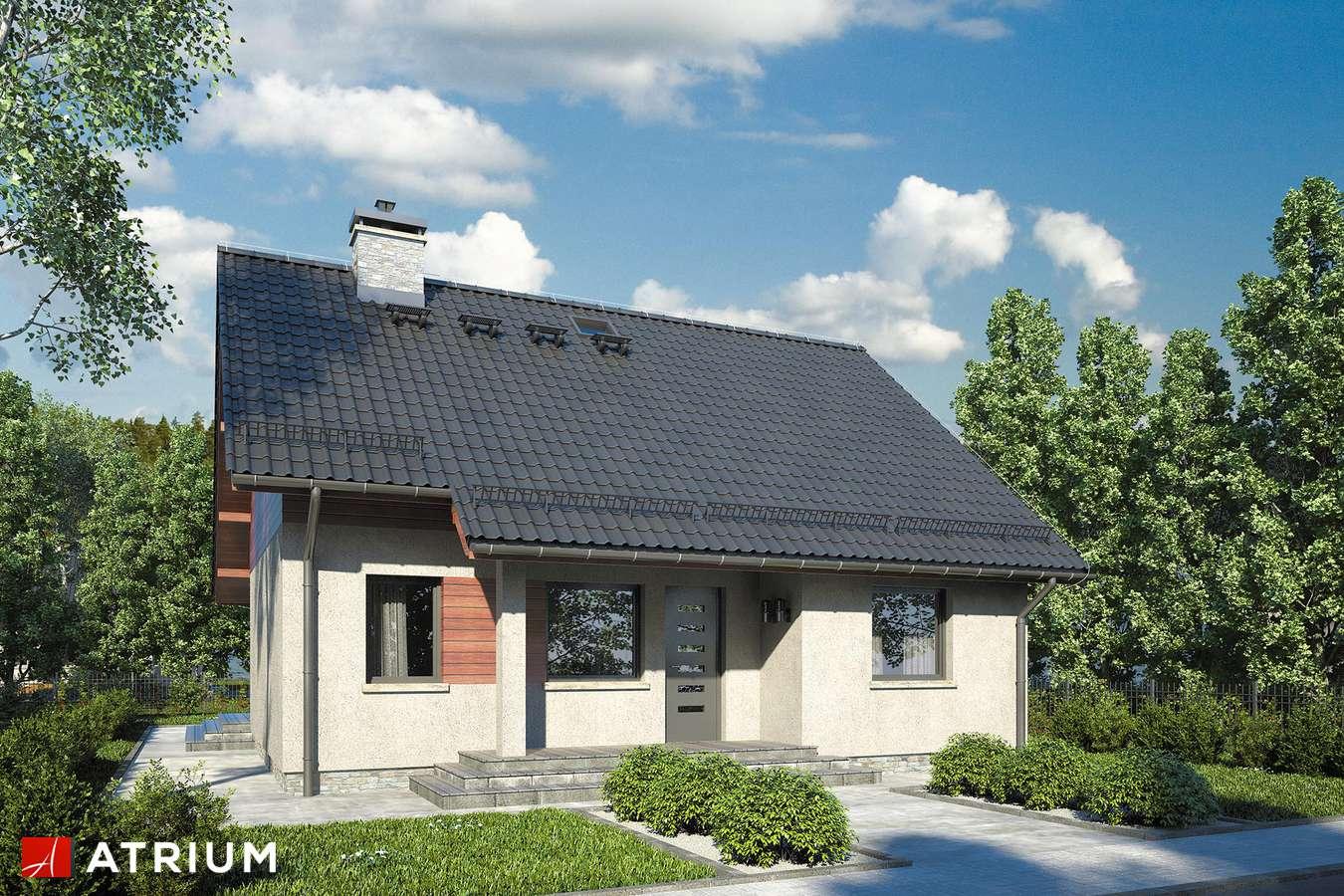 Projekty domów - Projekt domu parterowego REMIK VI - wizualizacja 1