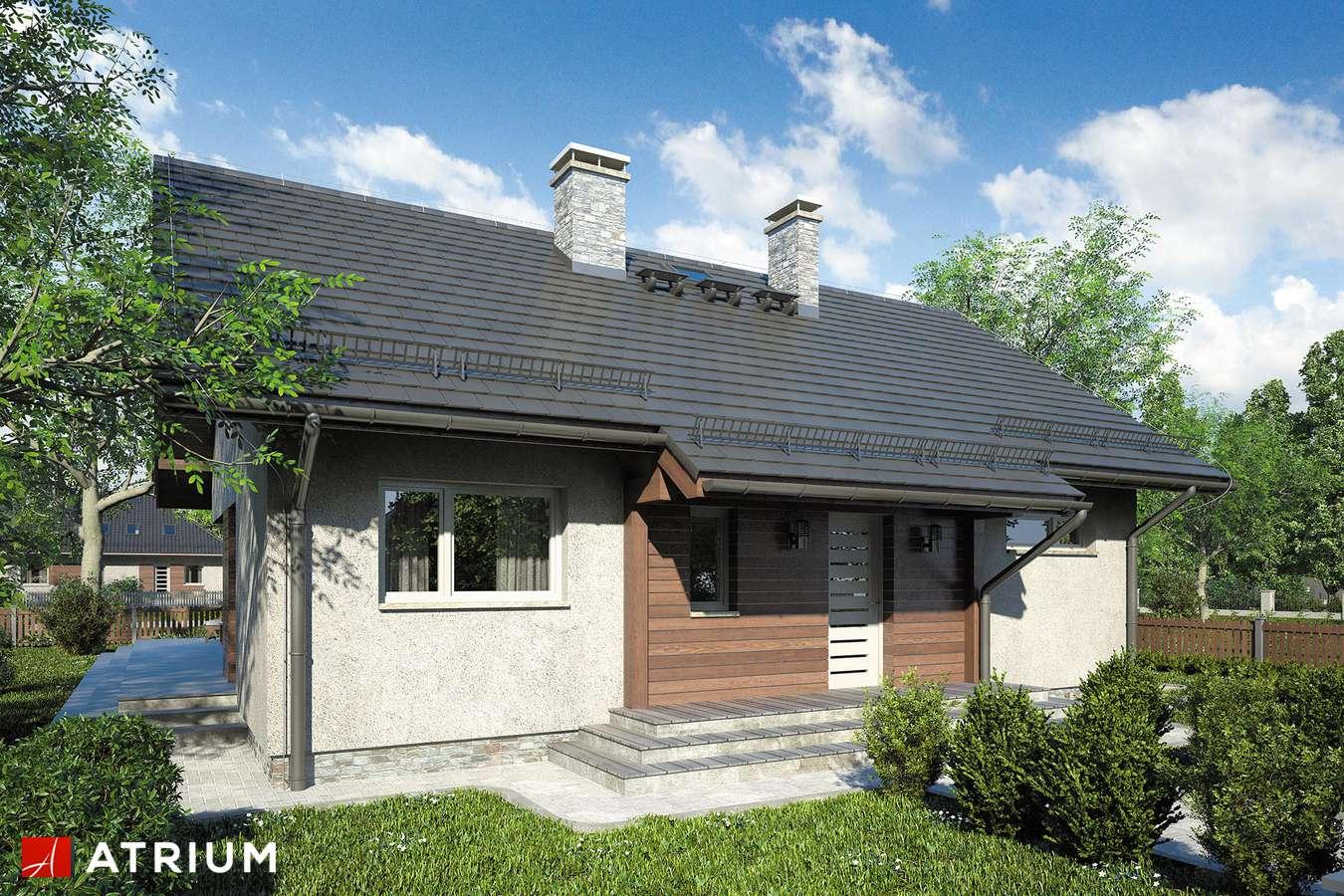 Projekty domów - Projekt domu parterowego AMBER IX - wizualizacja 1