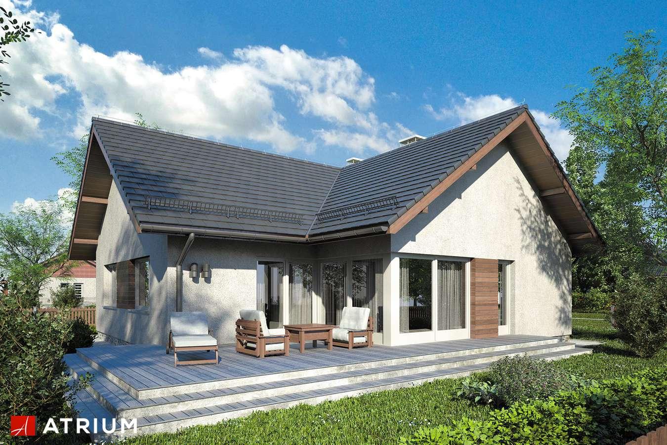 Projekty domów - Projekt domu parterowego AMBER IX - wizualizacja 2