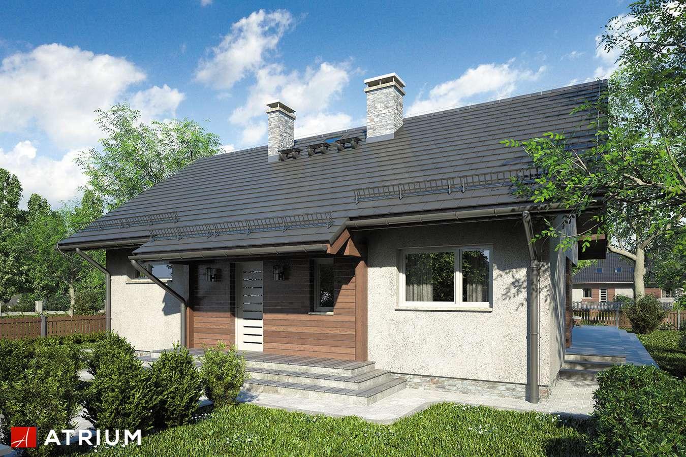 Projekty domów - Projekt domu parterowego AMBER IX - wizualizacja 1 - wersja lustrzana