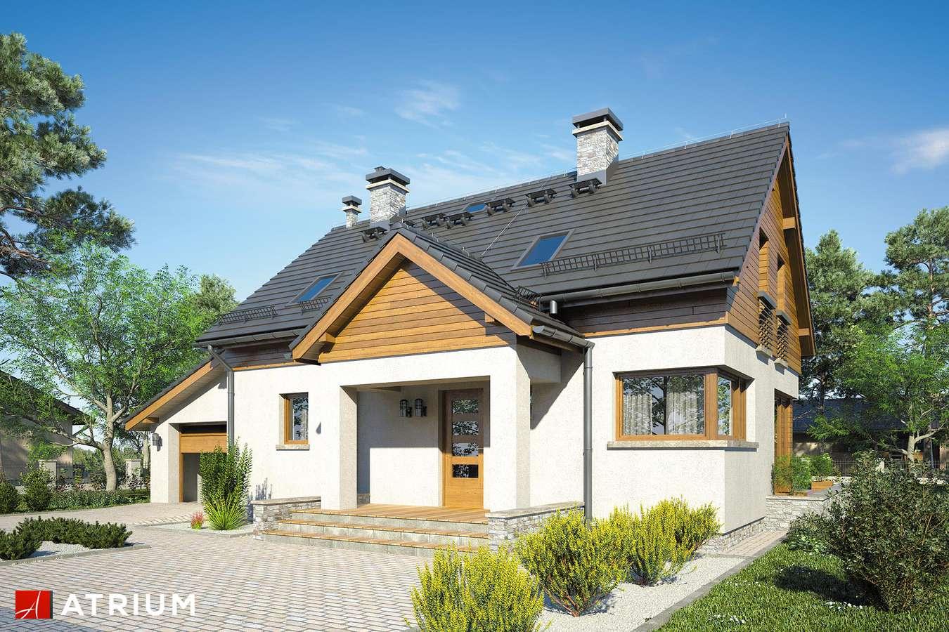 Projekty domów - Projekt domu z poddaszem SAMBA XII - wizualizacja 1