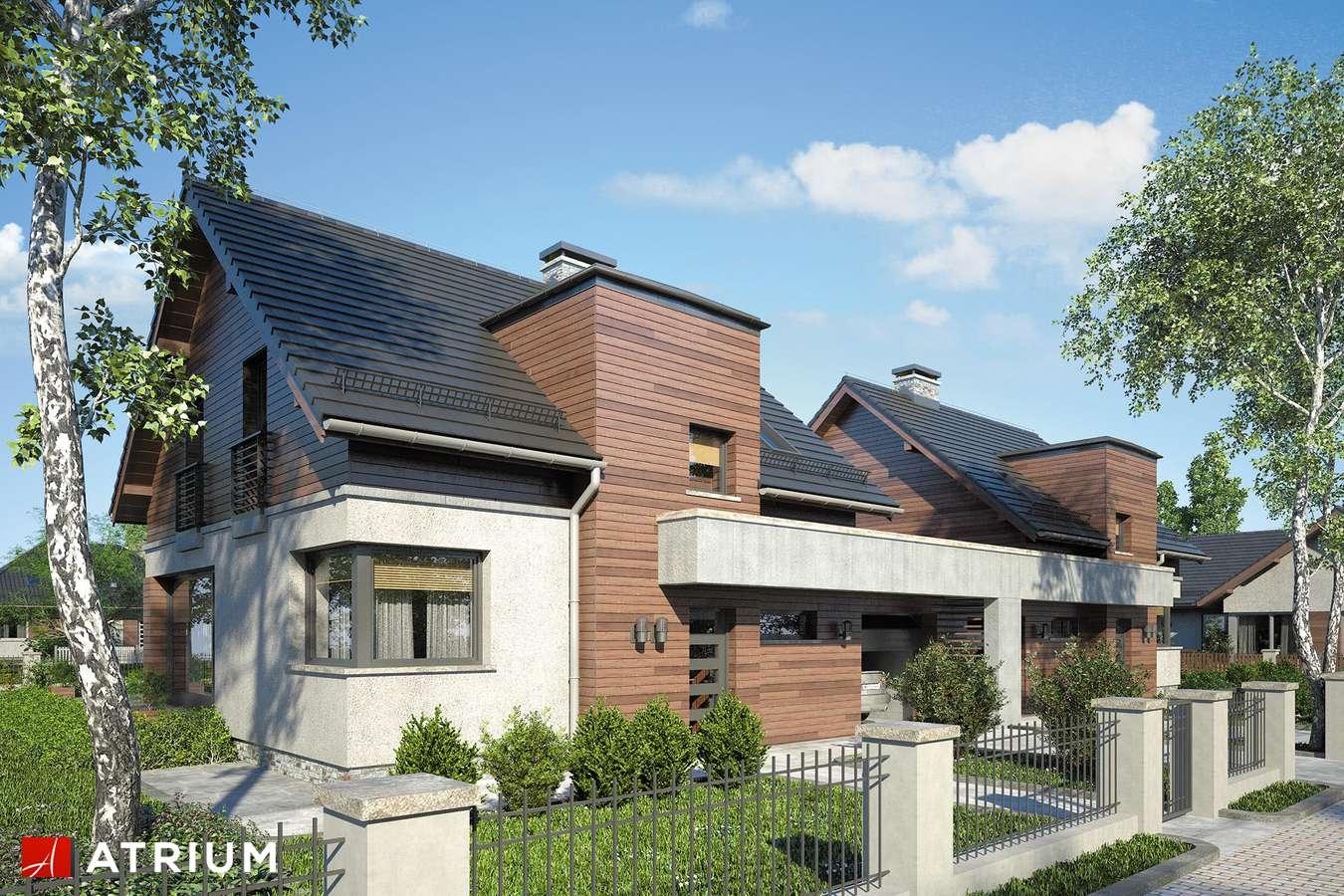 Projekty domów - Projekt domu z poddaszem POLO DUO IV - wizualizacja 1