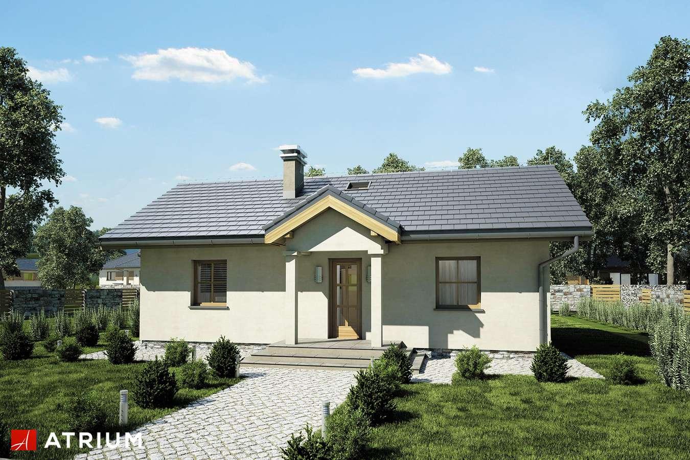 Projekty domów - Projekt domu parterowego TANGO III - wizualizacja 1